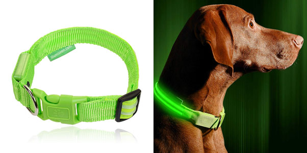 4.LED Dog Collar Illumiseen (6 Colors Available)
