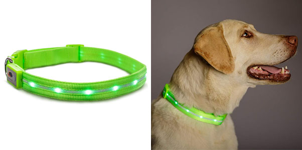 7. Blazin' Safety LED Dog Collar (10 Available Colors)