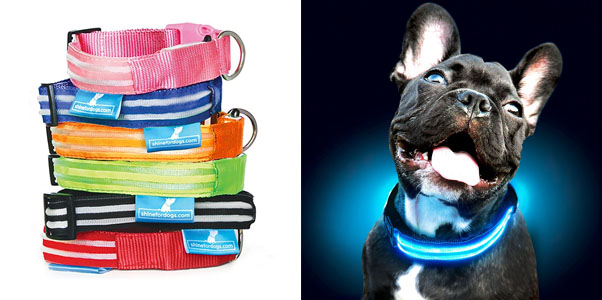 9.Shine for Dogs Ultimate LED Dog Collar