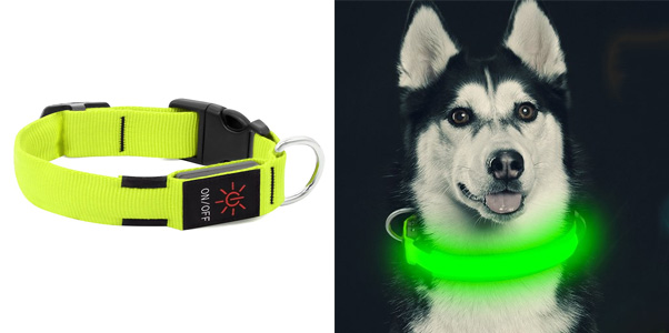 HiGuard LED Dog Collar, USB Rechargeable LED Dog Collar
