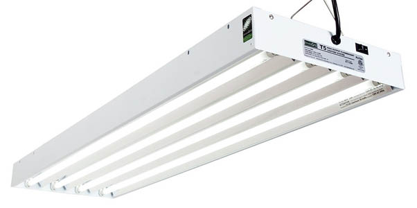 T5 Fluorescent Tube Sizes