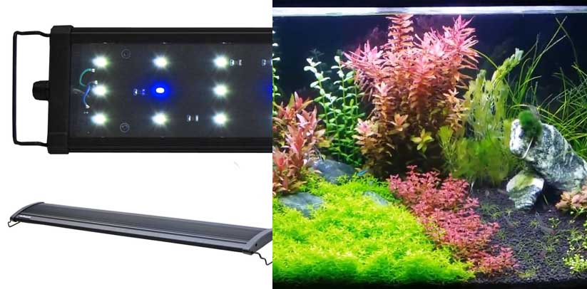 BeamsWork EA Timer LED Aquarium Light