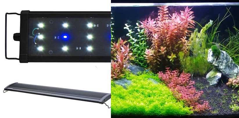 BeamsWork EA Timer LED Aquarium Light