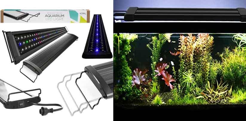Koval Colorful Full Spectrum LED Aquarium Light