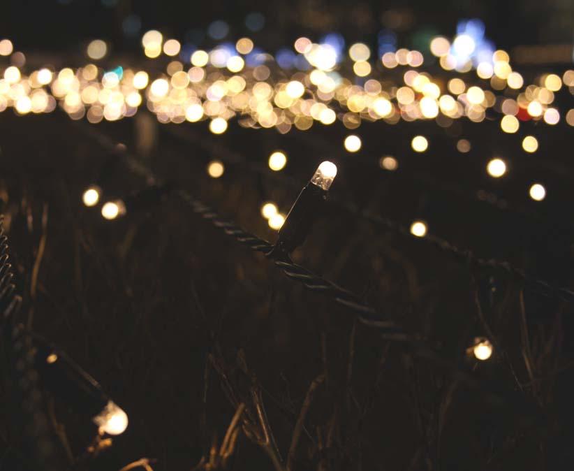 LED String Lighting in Garden