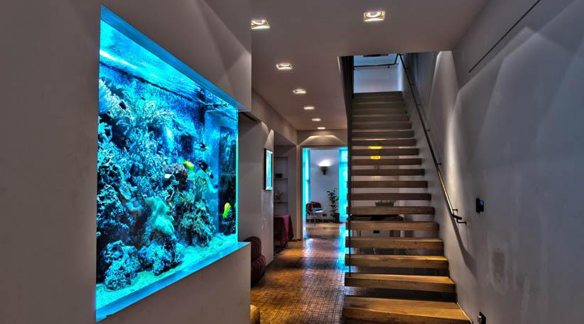Top 5 Best LED Aquarium Lighting