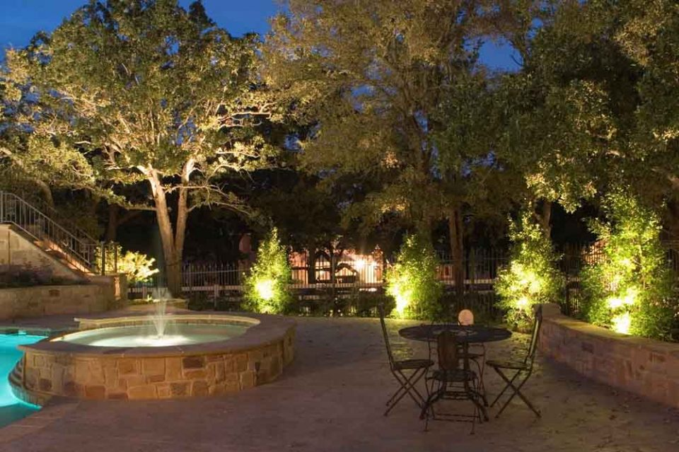 Best Solar Lights for Trees